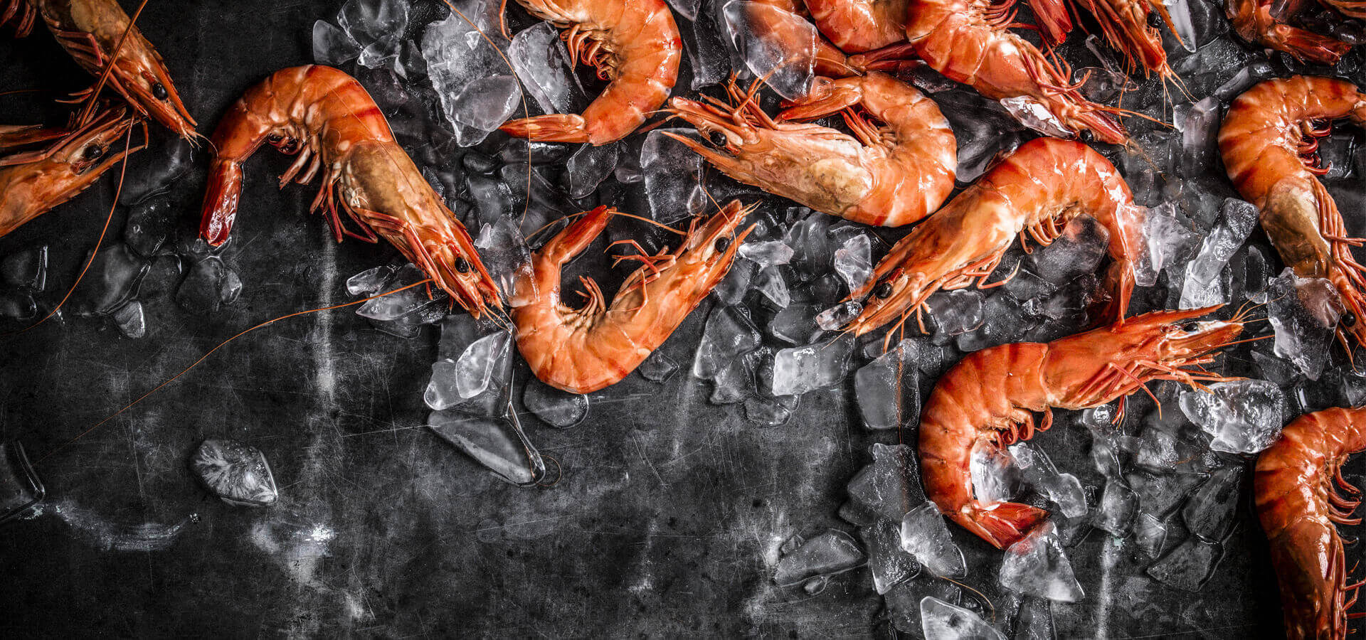 Seafood can't be Left to chance Seafood can't beLeft to chance